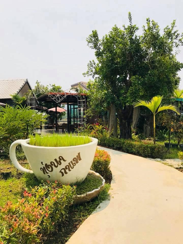 ทุ่งนากาแฟ at เชียงใหม่ Asiatop10