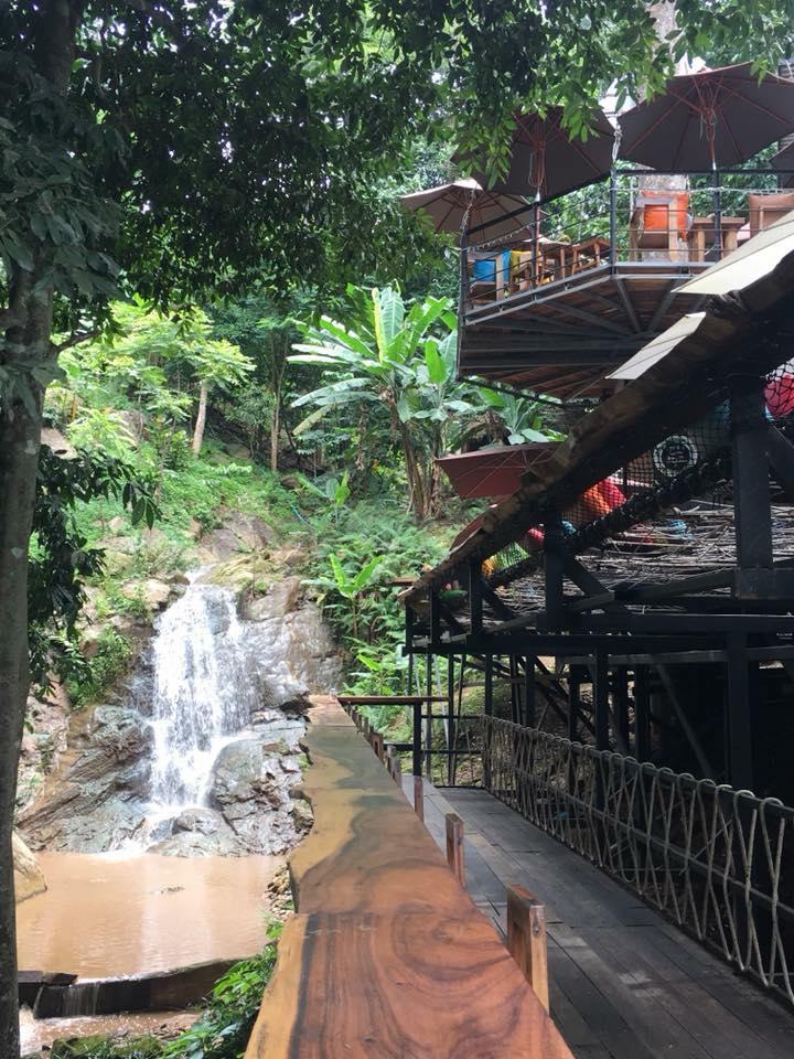 Jungle De Cafe จังเกิ้ล เดอ คาเฟ่ Asiatop10