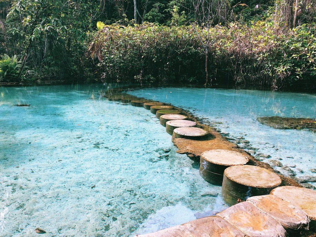 ป่าต้นน้ำ บ้านน้ำราด จ.สุราษฎร์ธานี