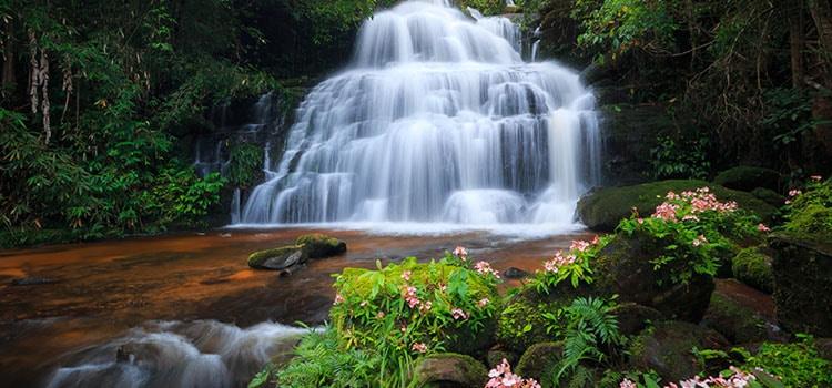 หน้าฝนเที่ยวอุทยานแห่งชาติภูหินร่องกล้า
