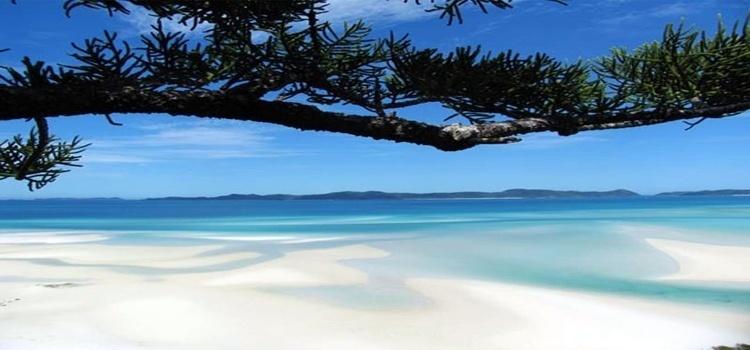 หาดไวท์เฮเวน หมู่เกาะไวท์ซันเดย์ ประเทศออสเตรเลีย