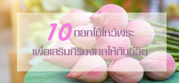 10 ดอกไม้ไหว้พระ เพื่อเพิ่มความเป็นศิริมงคลให้กับชีวิต 6
