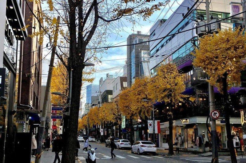 ถนนช้อปปิ้งชินซาดง