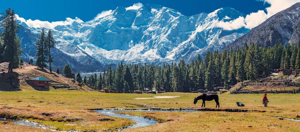 ภูเขานันกา พาบัท (Nanga Parbat)