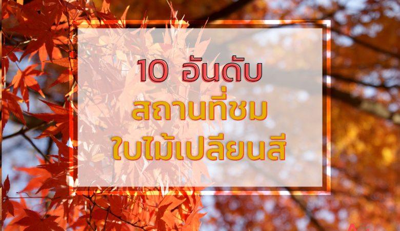 10 สถานที่ชม ใบไม้เปลี่ยนสี 14