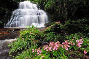 10 น้ำตกสวยของไทย ชีวิตนี้ต้องไปสักครั้งให้ได้ 30